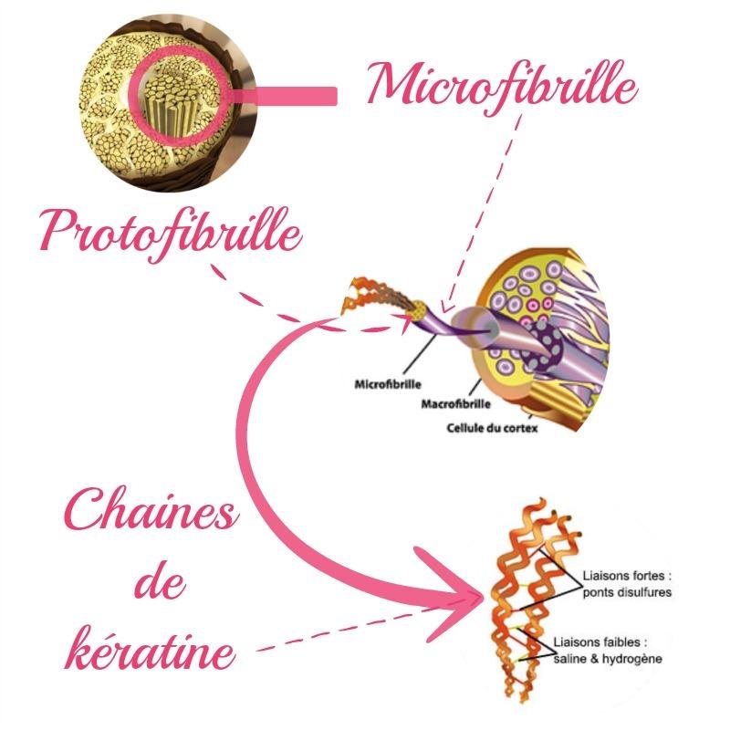 chaines de keratine